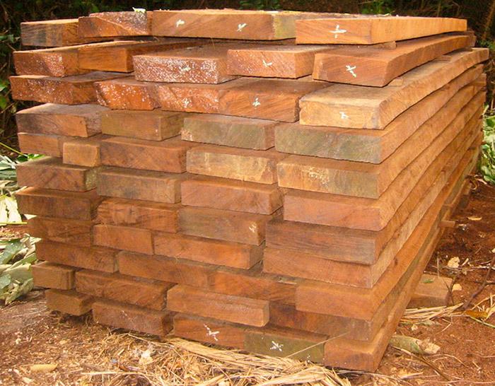 Assi di legno stoccate nel luogo di produzione in RDC